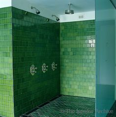Brian Paquette great combo of tiles styles here The green
