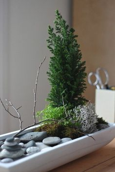 mini zen garten pflanzen anlegen flusssteine