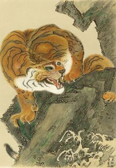 "japaneseaesthetics: Chromolithograph of ""Tiger From Life"" from a painting by Kiuho Toyei (19th century, Japan)"