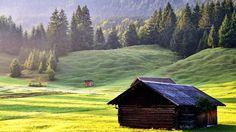 Gambar Padang Rumput Menakjubkan