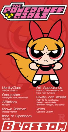 Powerpuff Girls Character Spotlight from RIPT Apparel Custom Tees.