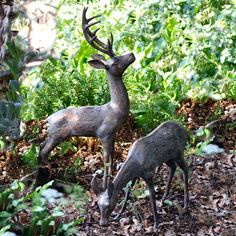 Pair Of Aged Bronze Finish Deer - Large. Stag and Doe garden sculptures / ornaments cast in Aluminium with an aged bronzed finish. Deer Garden, Woodland Garden, Garden Art, Garden Design, Garden Ideas, Garden Whimsy, Garden Junk, Glass Garden, Garden Inspiration