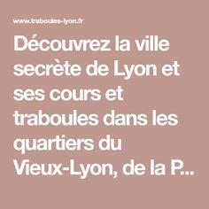 20 Idees De Lyon Fresques Fresque Lyon Peindre Mur