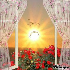 Good Morning Sunshine...