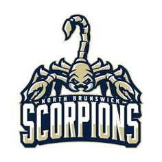 Image result for scorpion sports logo