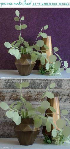 plante originaire de chine le pilea peperomioides ou plante monnaie chinoise plantes. Black Bedroom Furniture Sets. Home Design Ideas