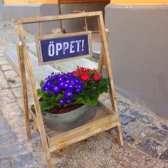 idea for easel Stall Display, Display Ideas, Office Signage, Restaurant Signs, Red Geraniums, Open Signs, Larder, Outdoor Planters, Client