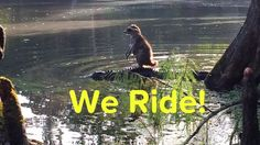 I just captioned this crazy photo of a raccoon riding an alligator.