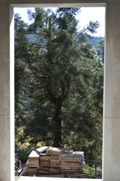 Villa del Gran Oyamel EDOMEX