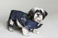 Moda animal: deixe seu amigo quentinho e estiloso - Viver Bem - Animal - Gazeta do Povo