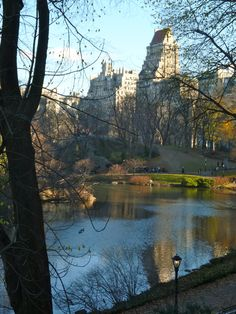 Love Central Park