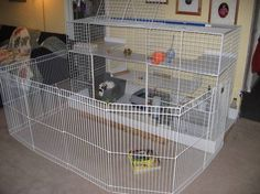 "rabbit cage multilevel- I might try building Batman something like this with the 40 white 14"" x 14"" wire panels that I got online from The Store Supply Warehouse for only $1.10 each!! Check it out! Brandi, rorri would love this !"