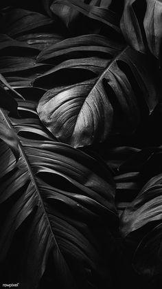 Black Background Wallpaper, Black Phone Wallpaper, Black And White Wallpaper, Black Aesthetic Wallpaper, Locked Wallpaper, Screen Wallpaper, Wallpaper Display, Sparkles Background, Mobile Wallpaper