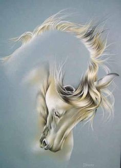 Beautiful painting of white horse Painted Horses, Horse Drawings, Art Drawings, Art Triste, Horse Artwork, Art Abstrait, White Horses, Equine Art, Horse Pictures