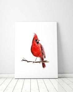 Rode kardinaal vogel Aquarel kardinaal print Amerikaanse