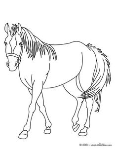 Home Decorating Style 2020 for Coloriage De Cheval A Imprimer, you can see Coloriage De Cheval A Imprimer and more pictures for Home Interior Designing 2020 3040 at SuperColoriage. Farm Animal Coloring Pages, Dog Coloring Page, Easy Coloring Pages, Free Adult Coloring Pages, Printable Coloring Pages, Coloring Sheets, Pintura Online, Image Rock, Most Beautiful Horses