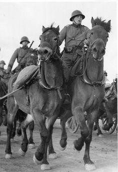 Swedish Army, horse driven artillery - pin by Paolo Marzioli Army Uniform, Military Uniforms, Swedish Army, Helsingborg, Armed Forces, World War Ii, Finland, Ww2, Sweden