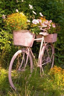 bike planter ...love it! I can do with out the pink would have to repaint it.