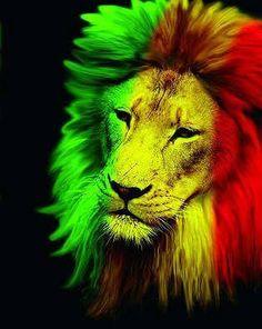 🎶 Stay strong like rasta lion Rasta Art, Rasta Lion, Frases Reggae, Reggae Style, Reggae Art, Nesta Marley, Twitter Backgrounds, Lion Of Judah, Leo Lion