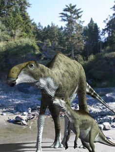 Brachylophosaurus canadensis. By PaleoGuy on DeviantArt