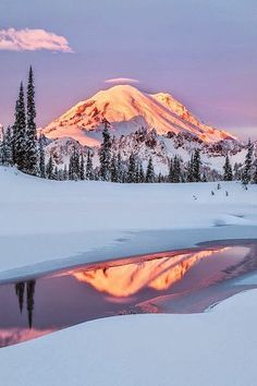 I remember many beautiful hikes up to the ice caves at beautiful Mount Rainier National Park in Washington State. Beautiful World, Beautiful Places, Amazing Places, Awesome Things, Wonderful Places, Landscape Photography, Nature Photography, Photography Tips, Monte Fuji
