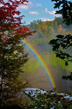 Rainbow ~By *Roni* | Belive in Magic