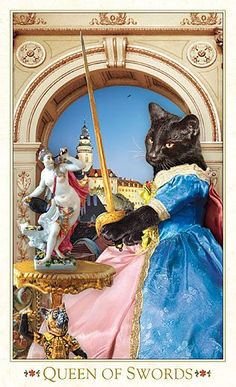 How About Some Tarot Cards With Gorgeous Baroque Bohemian Cats On Them? - World's largest collection of cat memes and other animals Cat Cosplay, F2 Savannah Cat, Gatos Cats, Tarot Decks, Cat Life, Pet Portraits, Cat Art, Baroque, Dog Cat