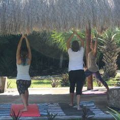 A yoga philosophy comparison