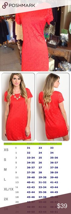 Red Lace Dress (Petite Only) This gorgeous dress features lace overlay, rounded neckline and short sleeves. (Petite Only) Shell: 95% Nylon, 5% Spandex Lining: 100% Polyester (This closet does not trade or use PayPal) En Focus Studio Dresses Midi
