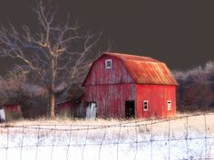 Beautiful light in the Barn Photo.