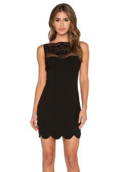 Endless Rose Lace Scalloped Dress in Black | REVOLVE