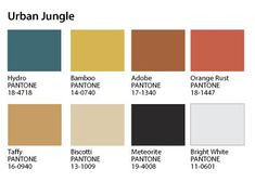 PANTONEVIEW_Urban-Jungle_5