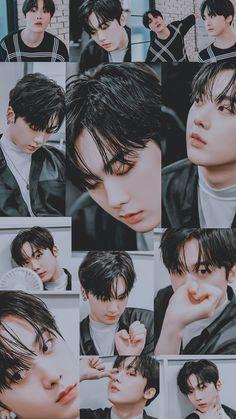 Baby Sans, Baby Beagle, Astro Wallpaper, Cha Eun Woo Astro, Astro Fandom Name, Astro Boy, Sanha, Kpop, Flower Boys