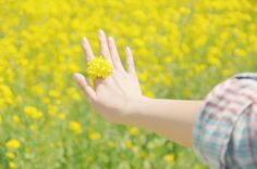 Beautiful Hands, Beautiful Flowers, Yellow Flowers, Happy Life, Find Image, Holding Hands, We Heart It, Rings, Nature
