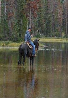 There's More Then One Way To Fish..this would totally be Dillan on Lady! Mixing his two favorite things