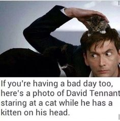 Doctor and kittens:)