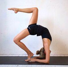 #base #body #flex #move