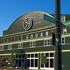 Seattle Aquarium, loved this aquarium