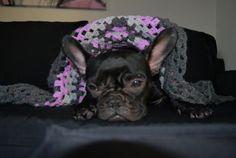 French Bulldog Granny Square Handmade Crochet by EsmeraldasCrochet, €50.00