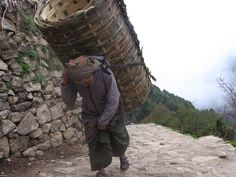 Sherpa farmer bought bamboo fence in Namche Bazaar and carries it home; Nepal Himalayas