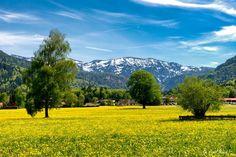 Ein Ausflugsziel zu Muttertag, das Tegernseer Tal und das Kreuther Tal