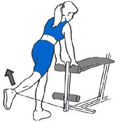 exercice de musculation grand fessier au banc multi-fonction