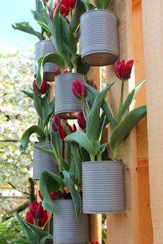 , 10 Simple DIY Vintage and Rustic Garden Decor Ideas for a Budget You Need to Try Immediately [. , 10 Simple DIY Vintage and Rustic Garden Decor Ideas for a Budget You Need to Try Immediately Rustic Garden Decor, Rustic Gardens, Outdoor Garden Decor, Planting Tulips, Tulips Garden, Wooden Garden Planters, Red Tulips, Garden Theme, Hanging Plants