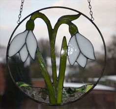 This is my picture gallery Stained Glass Suncatchers, Stained Glass Designs, Stained Glass Projects, Stained Glass Patterns, Stained Glass Flowers, Stained Glass Art, Fused Glass, Glass Butterfly, Leaf Flowers