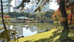 Tokyo Travel: Hama Rikyu -- Popular urban park including ponds, moon-viewing pavilions, and tea houses, good for an hour's walk and a jumping off point for Asakusa ferry (leaves every hour) -- 9am-4:30 -- Y300 -- Shiodome or Tsukiji-shijo stations