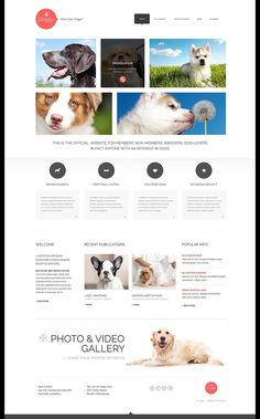 Dog Training, Grooming & Rescue WordPress Themes - Dog Lovers (template) Item Picture