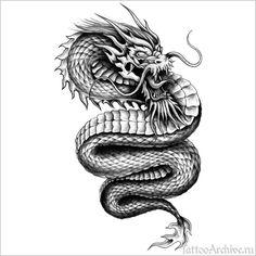 черный дракон - Поиск в Google