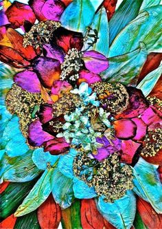Floral kaleidoscope - love this idea for a print Kaleidoscope Images, Pretty Patterns, Fractal Art, Photos, Pictures, Textures Patterns, Color Inspiration, Bunt, Flower Power