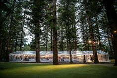 ♡ The end result of all the pinning... Our Wedding Reception @ Somerville Auditorium, Perth, Western Australia Woodland wedding, Marquee, clear marquee wedding, perth wedding