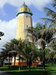 Historic Miami City Tour goes through Miami's most interesting neighborhoods as you learn about the city's history and see homes of the rich and famous! See the highlights of Miami such as South Beach, Downtown Miami, Brickell, Coconut Grove, Coral Gables, Little Havana, Ocean Drive and many more!